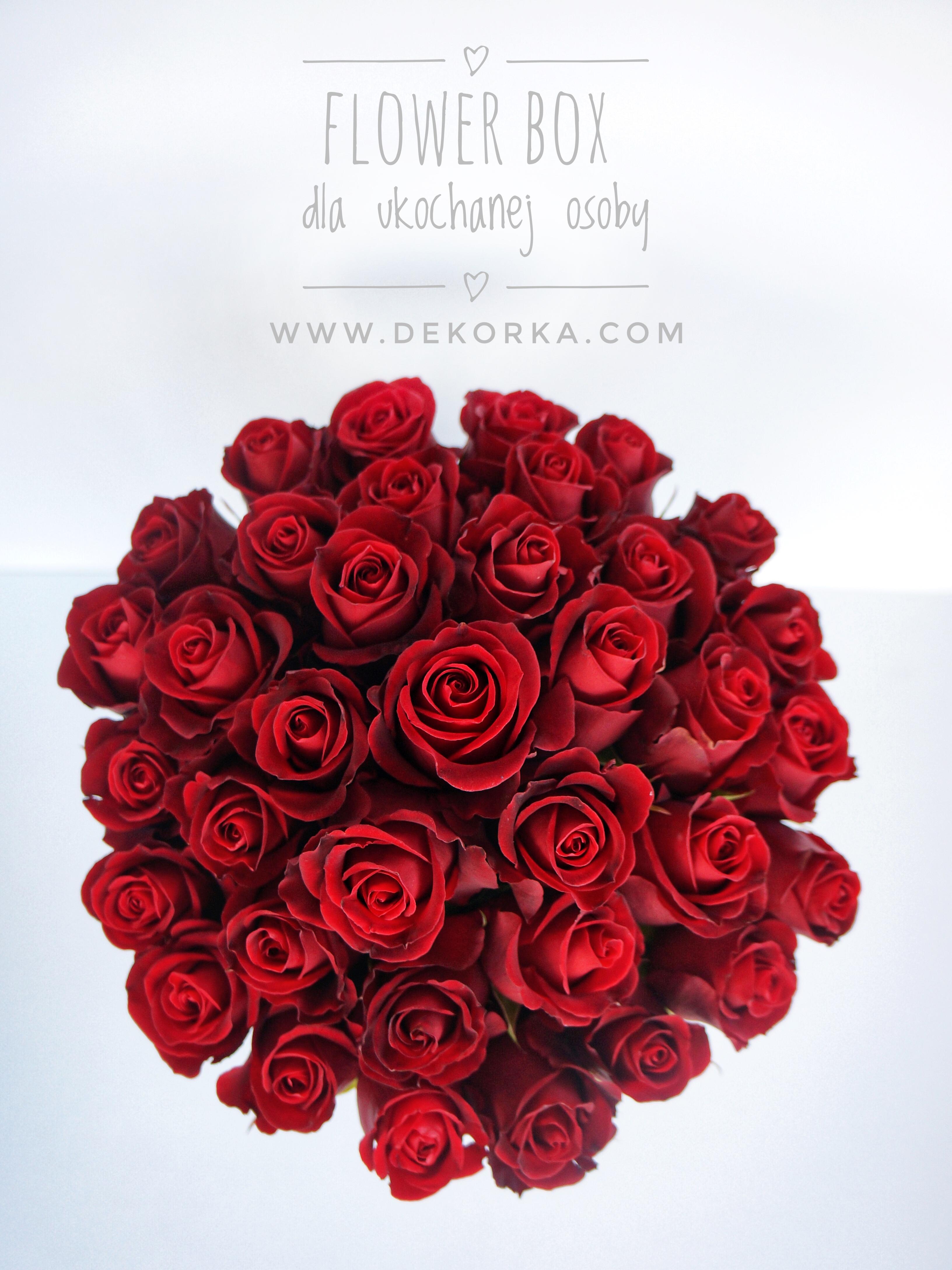 flower box katowice dekorka.com