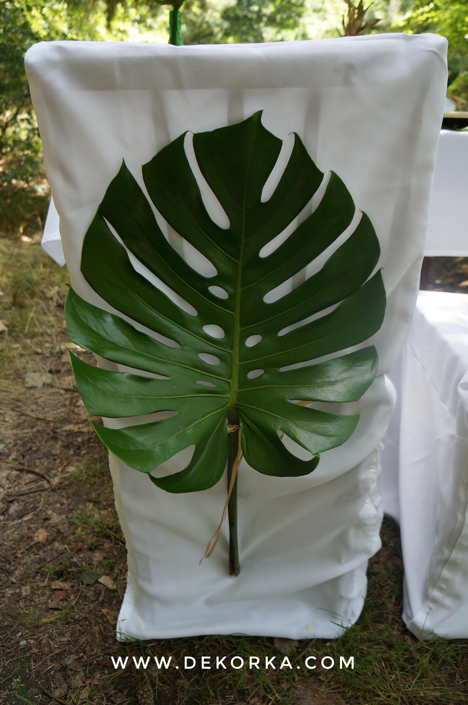 filodenron styl tropikalny dekorka. com